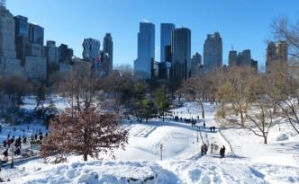 Central Park - Manhattan - New York