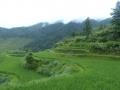Dragon\'s Backbone Rice Terraces (Longsheng)