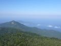 Rando Pico do Papagaio - Ilha Grande