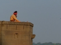 Vie le long du Gange