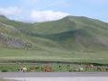 premiers pas en Mongolie