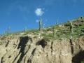 Trajet San Pedro - Salta
