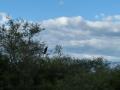Entre Cayate et le lac de Cabra Corral